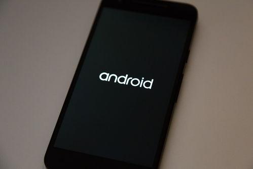 Как прошить Coolpad 5211. Обновляемся до Android Pie 9, Oreo 8.1
